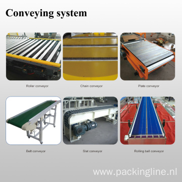 Popular Conveying System Conveyor